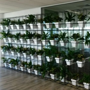 attache pot plant vertical garden 400x400