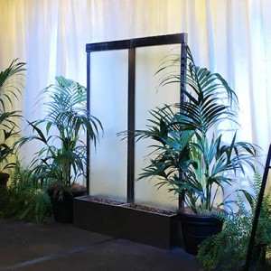 casual-canada-bay-council-rhodes-shopping-centre-water-feature-kentia-palm-fern-2-lr