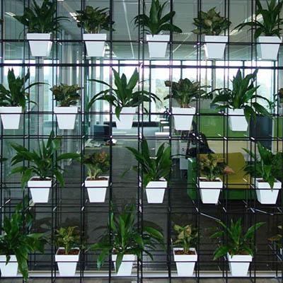 Pot Plant Vertical Garden Wall Short Term Hire