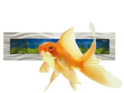 aquarium hire