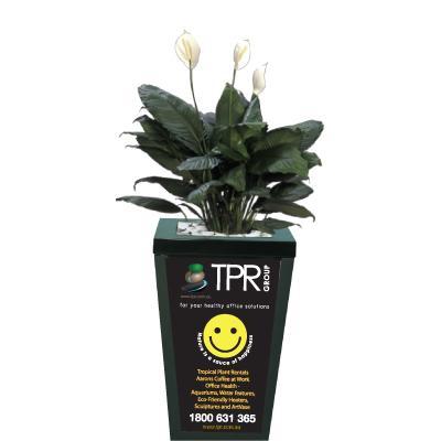 event plant pot marketing