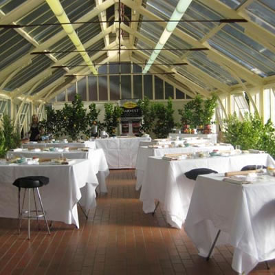 indoor plant hire for special event