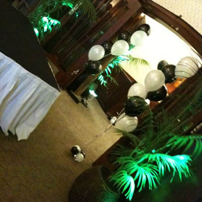 indoor plants party hire