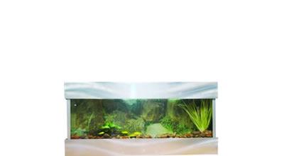 short term aquarium hire glass sides