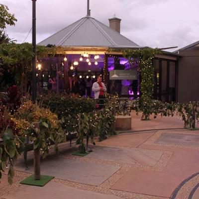 short term indoor plants hire