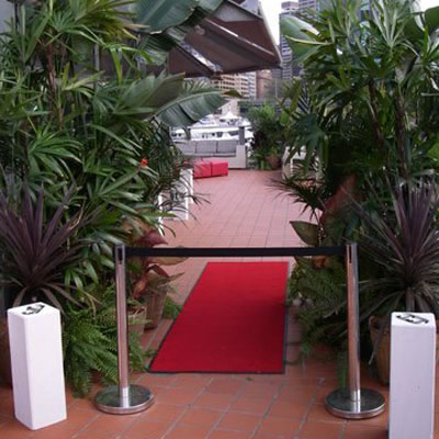 short term plants event hire