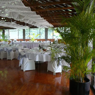 wedding indoor plants rentals