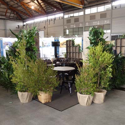 short term indoor plant hire client gallery